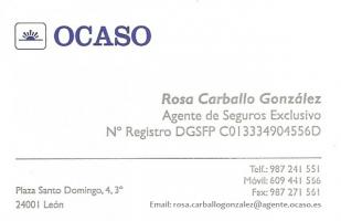Rosa-Carballo-2